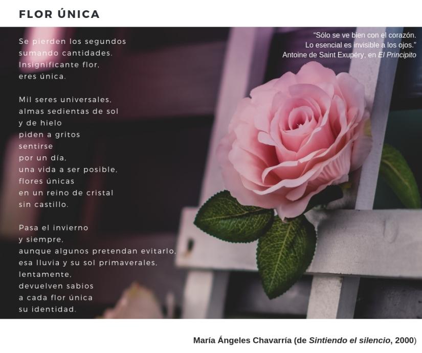 FLOR ÚNICA maria-angeles-chavarria Sintiendo el silencio 2000.jpg
